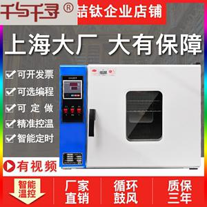 电热恒温鼓风干燥箱工业烘箱高温五谷草药大灯烤箱老化烘干机实验