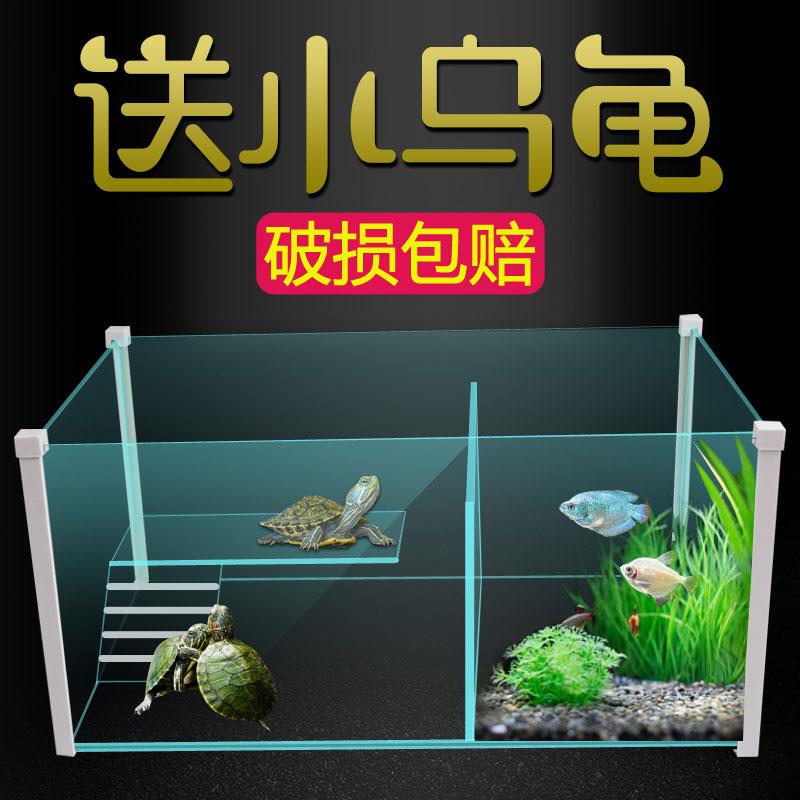 小型�B�觚��S酶� 水�缸��衽_�e墅 玻璃金�~缸�~��混�B缸 �~缸