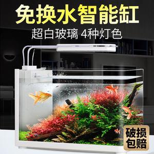 疯狂水草超白玻璃鱼缸小型客厅生态免换水金鱼桌面家用鱼缸水族箱