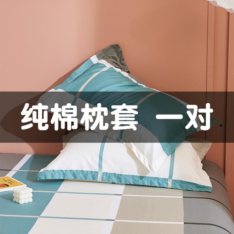 枕套新款一对装加厚全棉枕头枕芯48x74 简约北欧大号双人纯棉枕皮