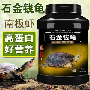 钦州石金钱龟 – 广西-钦州-钦南区特产