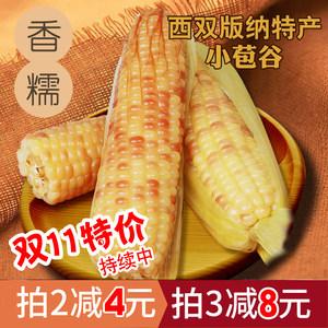 云南西双版纳香糯甜糯新鲜小玉米蒸熟新鲜玉米3斤真空包邮7-10个