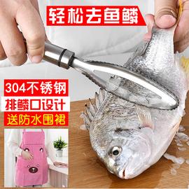 刮鱼鳞器304不锈钢鱼鳞刨 刷鱼鳞刀家用去鱼鳞神器 厨房小工具图片