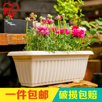 爱丽思花盆塑料长方形大花盘多肉蔬菜种植箱水培种花盆种菜盆阳台