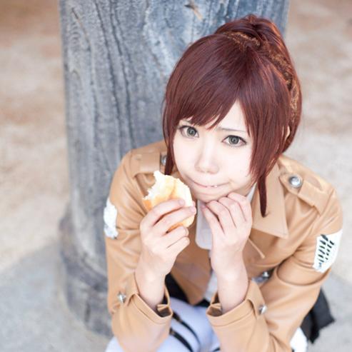 Большой ананас «заранее гигантский красный коричневый | sashabulaosi | |-Тигр клип хвост | COS парик»