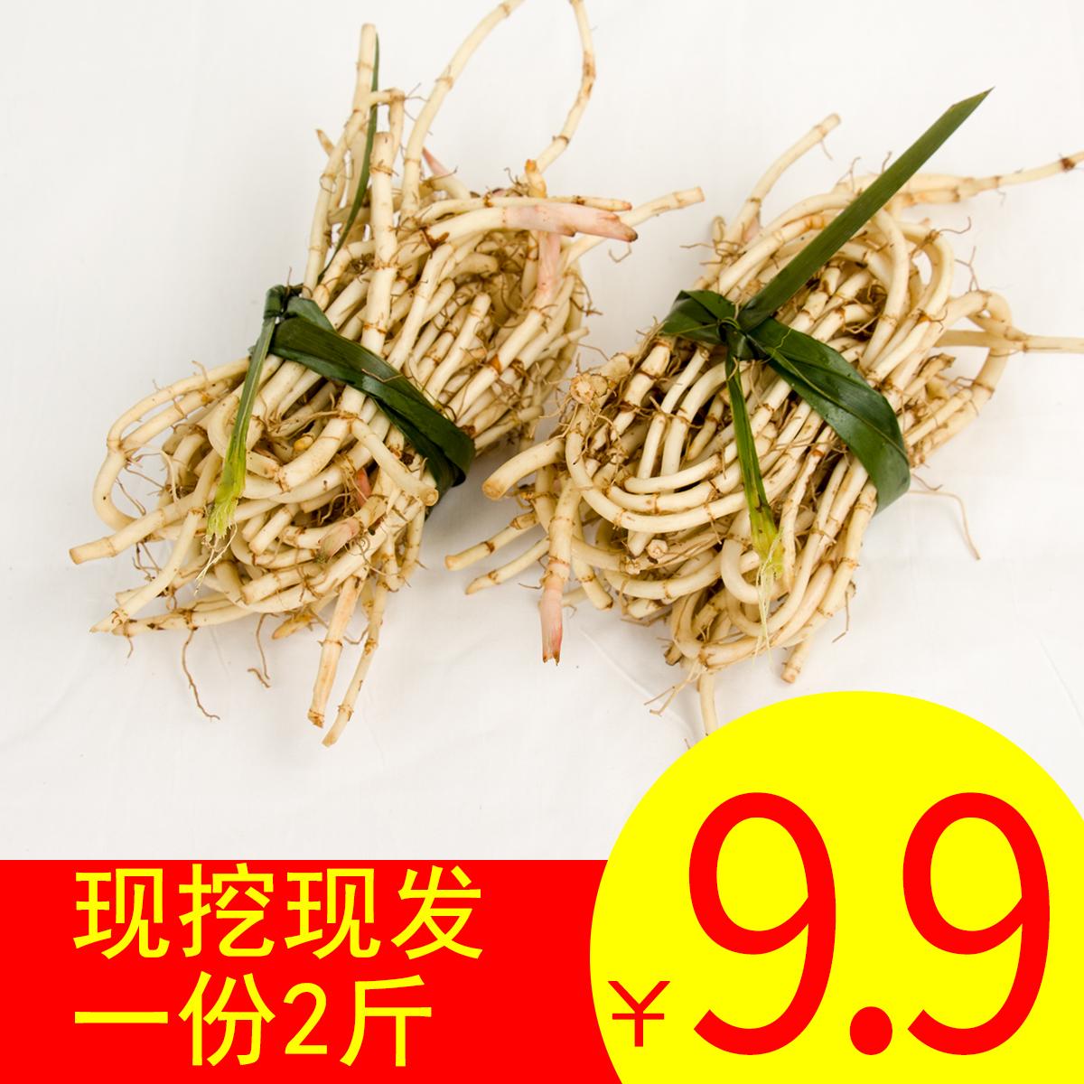 Свежий гуйчжоу сложить ухо корень не- провинция сычуань специальный свойство сельское хозяйство домой копать прохладно смешивать рыба рыбный трава дикий тендер корень 2 джин пакет mail