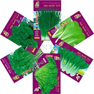 6组合玻璃生菜菠菜小葱小白菜种子