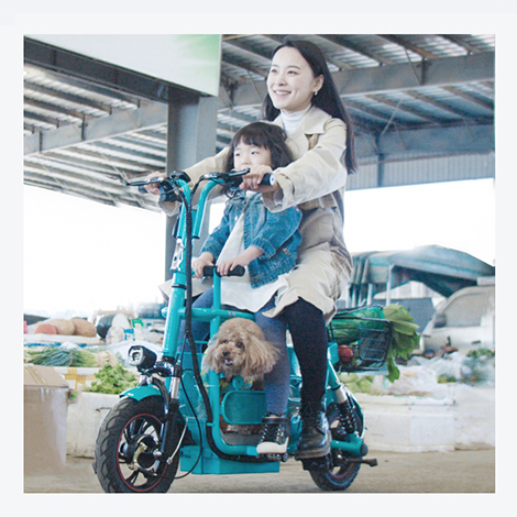 Parent child folding electric car 12 inch double folding electric car pet folding electric car mini electric bicycle