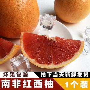 新鲜水果南非西柚大柚子红心葡萄柚孕妇1只装江浙沪皖10个包邮
