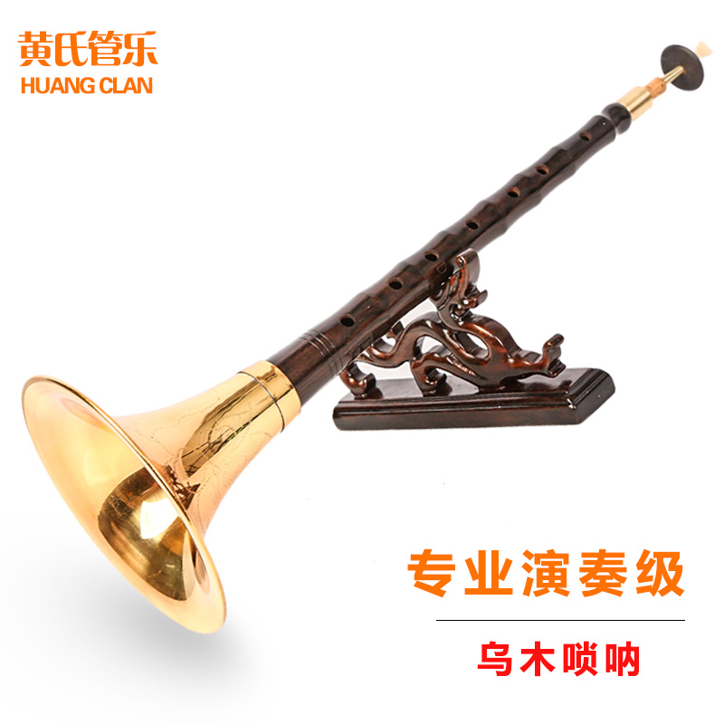 专业初学者演奏乐器