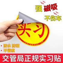 新手上路驾驶实习汽车贴纸女司机可爱搞笑贴反光标贴纸创意刮痕贴