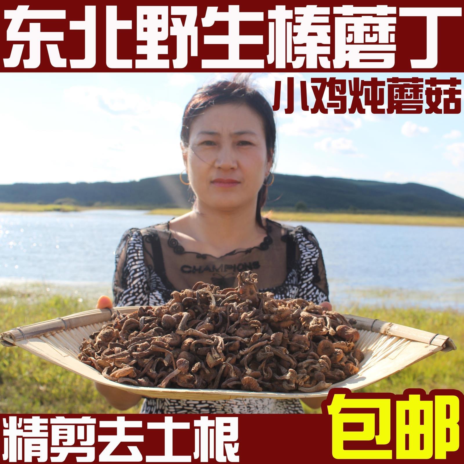 东北特产野生榛蘑丁榛蘑嫩芽小鸡炖蘑菇香菇干货山货无根500g包邮