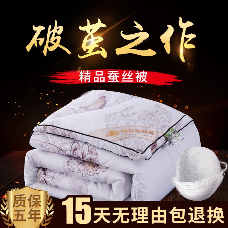 蚕丝被%100桑蚕丝冬被秋冬季加厚6斤8斤10斤全棉被子单人双人被芯