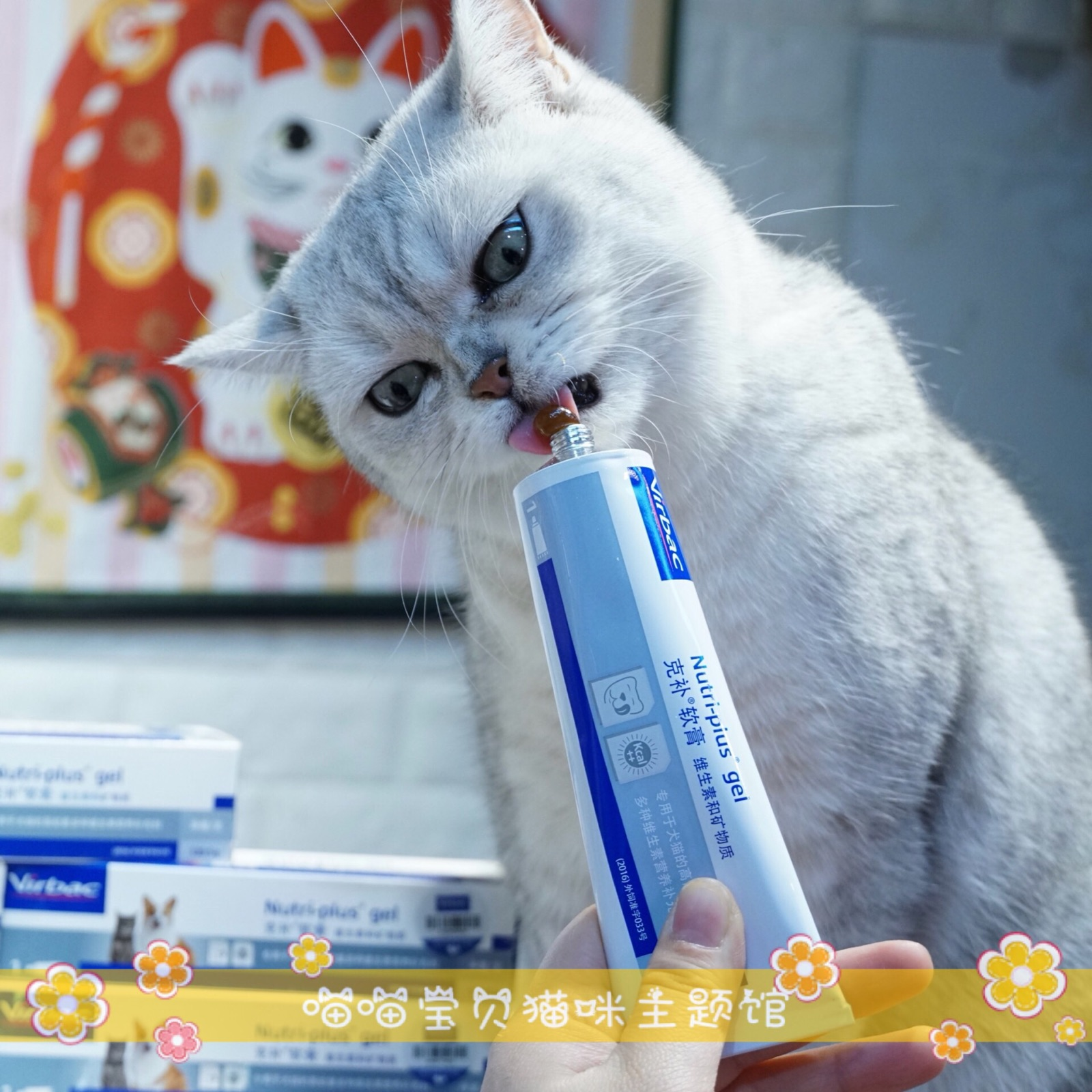 Meow baby French vicvirbac Kebu ointment cat dog nutrition cream vitamin pet health products