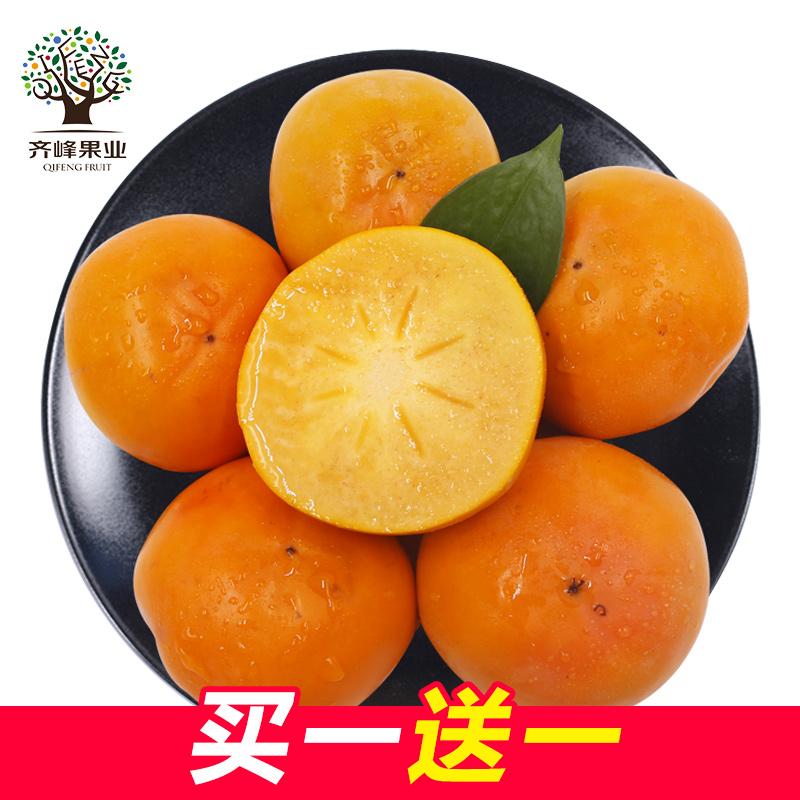 齐峰缘 日本阳丰脆柿大柿子 新鲜水果陕西野生现摘现发脆甜柿子
