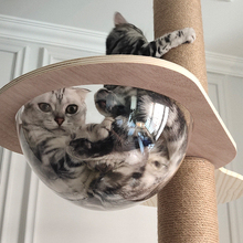 Selection and upgrading of cute cat climbing frame and sky pillar (accessories are not sold separately)