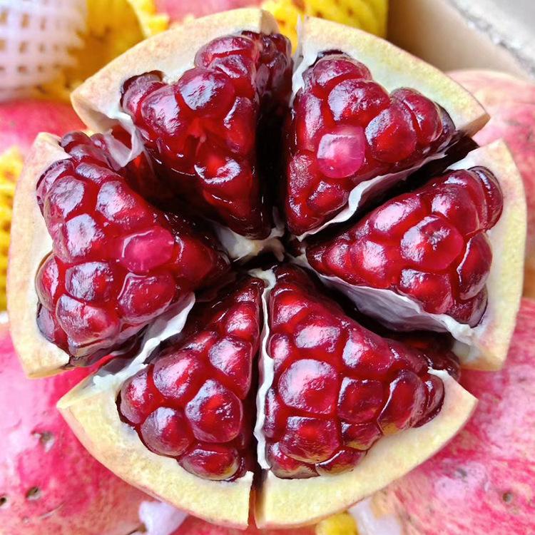 大凉山会理石榴 突尼斯软籽超甜新鲜水果精选一级大果5斤包邮