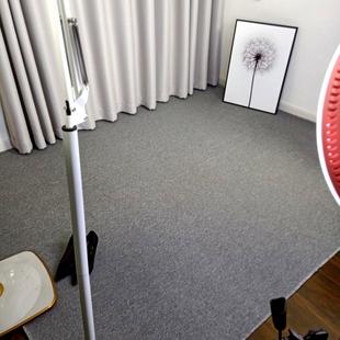 背景毯摄影布地毯定制 华德卧室办公室客厅满铺地毯拍照服装