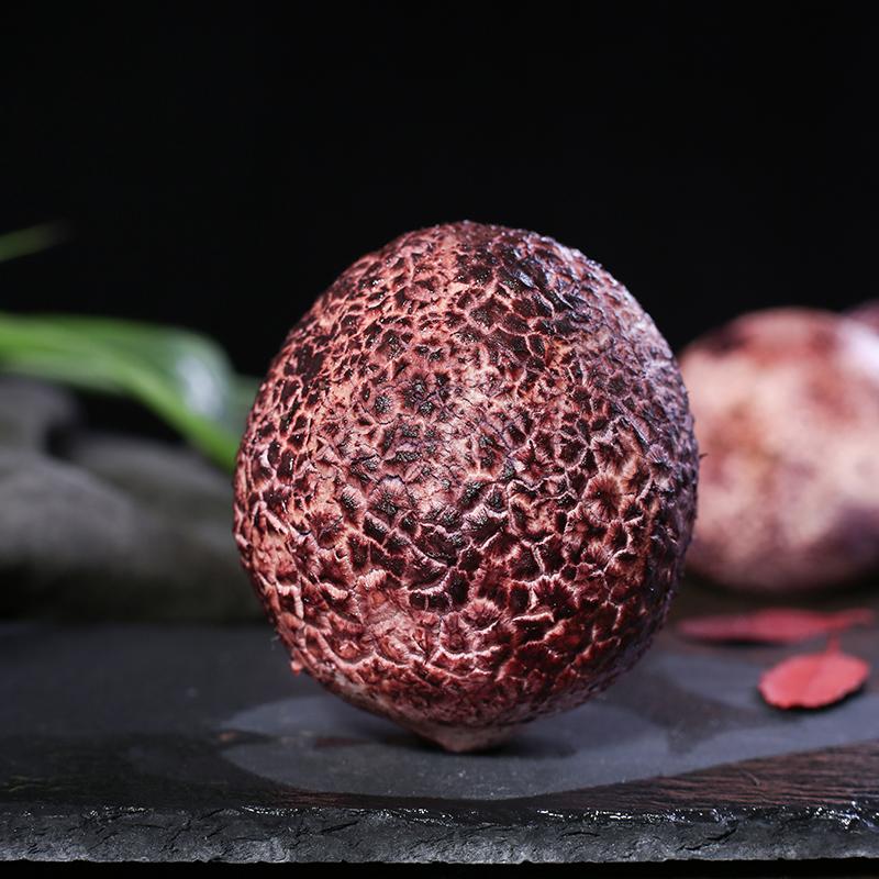 拾蘑菇 云南新鲜竹荪蛋 自然生长为竹荪菌现摘现发 菌菇 500g包邮