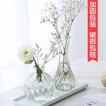 透明玻璃瓶水培植物容器绿萝养花小花瓶干花插花客厅摆件装饰花盆