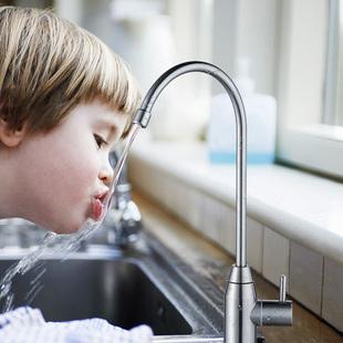 潜水艇厨房直饮水净水器水龙头304不锈钢洗菜盆洗碗池水槽2分家用图片