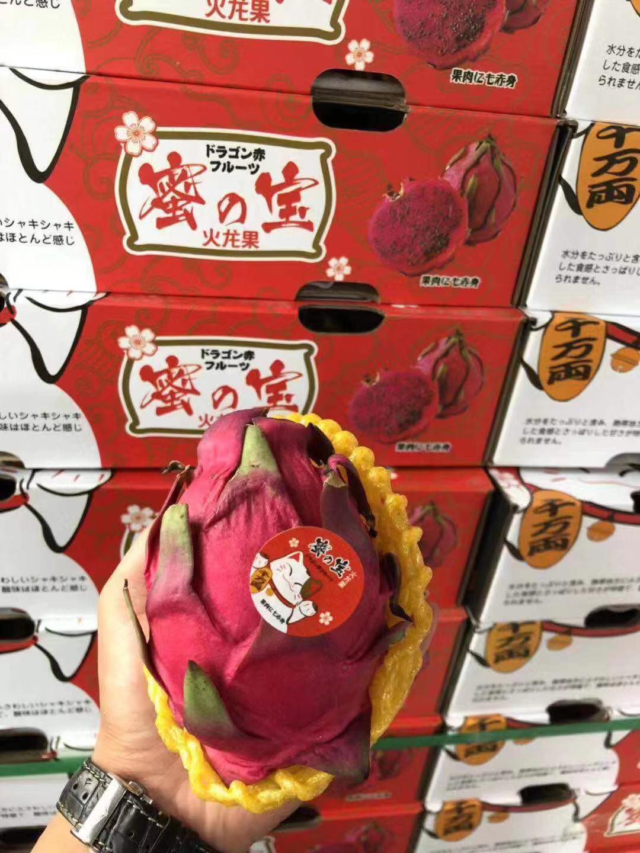招财猫蜜宝红心火龙果国产新鲜水果限2000张券