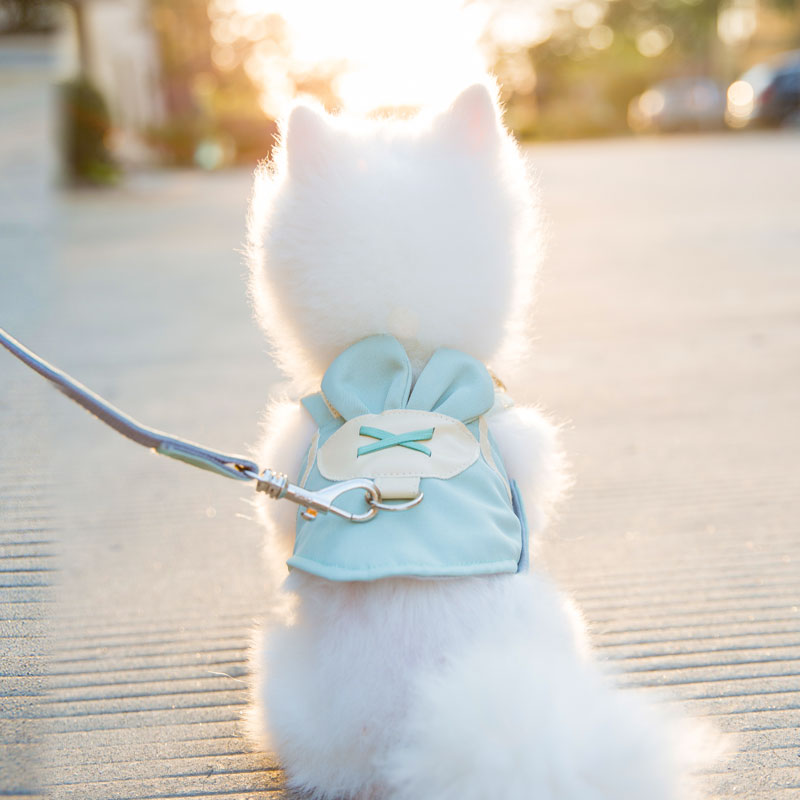 背心式背带幼犬泰迪比熊用品遛狗绳