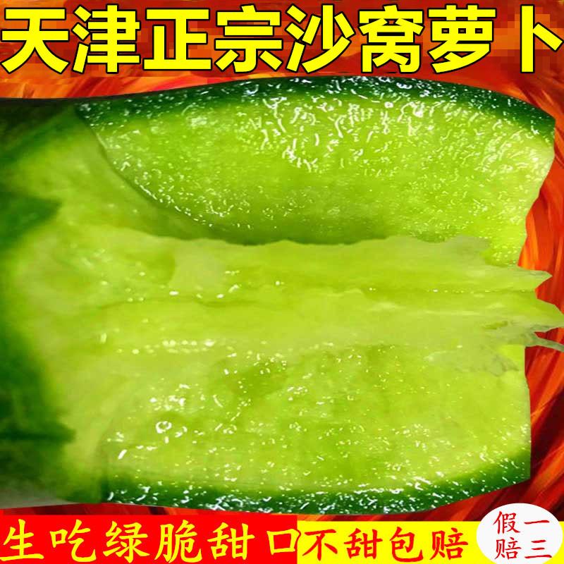 正宗天津特产小沙窝萝卜新鲜生吃绿皮青大水果型比潍坊县脆甜8斤