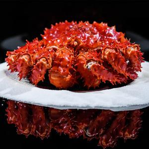 帝王蟹4.5-4.0斤智利新鲜熟冻海鲜水产大螃蟹皇帝长脚蟹腿肉满