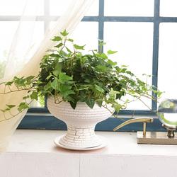 欧式陶瓷花盆绿萝花盆大号创意多肉花盆室内摆件艺术家居花盆陶瓷