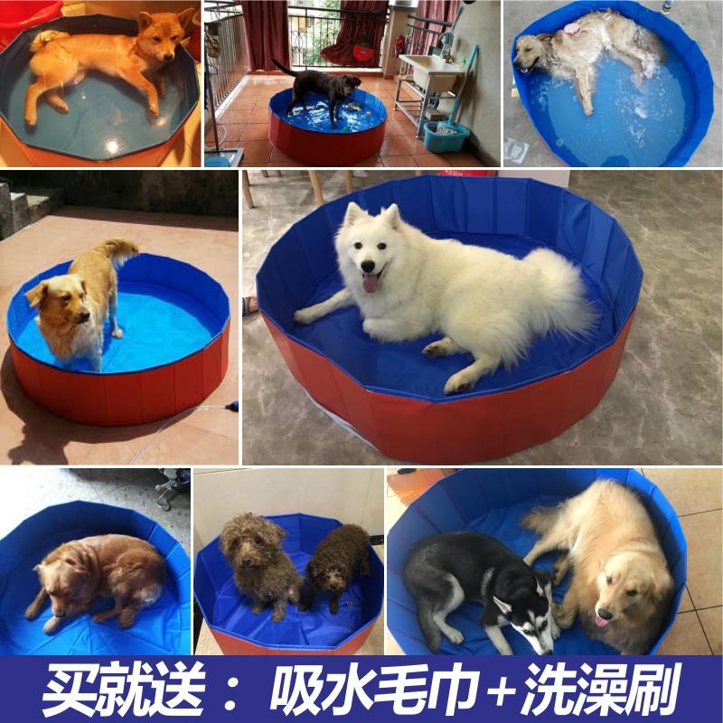 Собака купаться бассейн складные тедди золото волосы аллах аляска крупных собак домашнее животное ванна мыть собака бассейн собака статьи