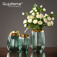 Simple modern luxury glass vase transparent hydroponics vase in Nordic living room table home decoration