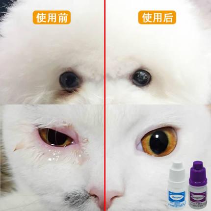 杏辉滴朗见大微素宠物猫咪去滴眼液