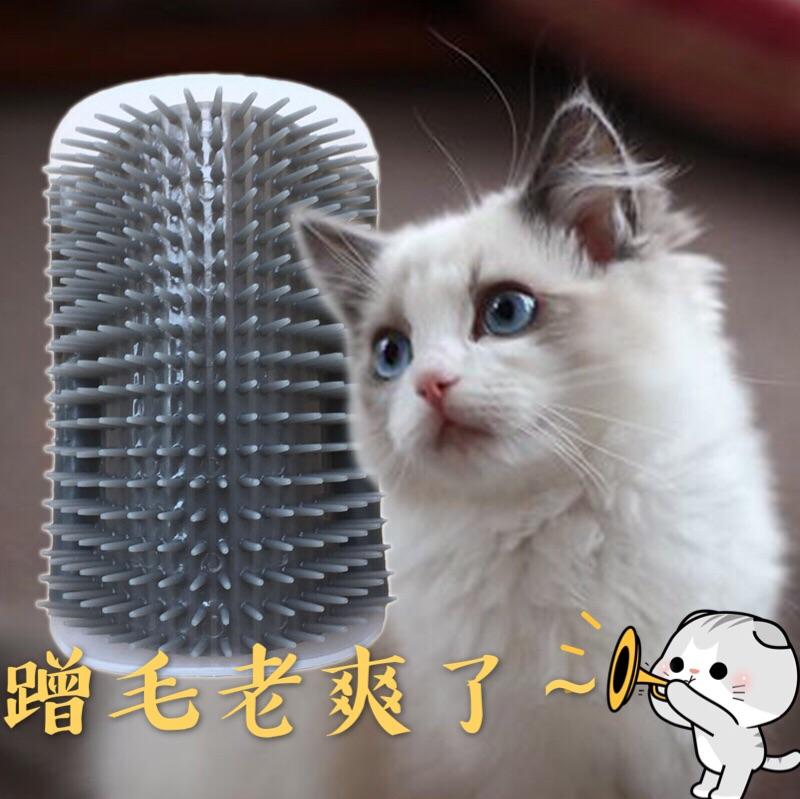 Кошка для парикмахера дверь Кошка-кошка-кошка-кошка в котенке