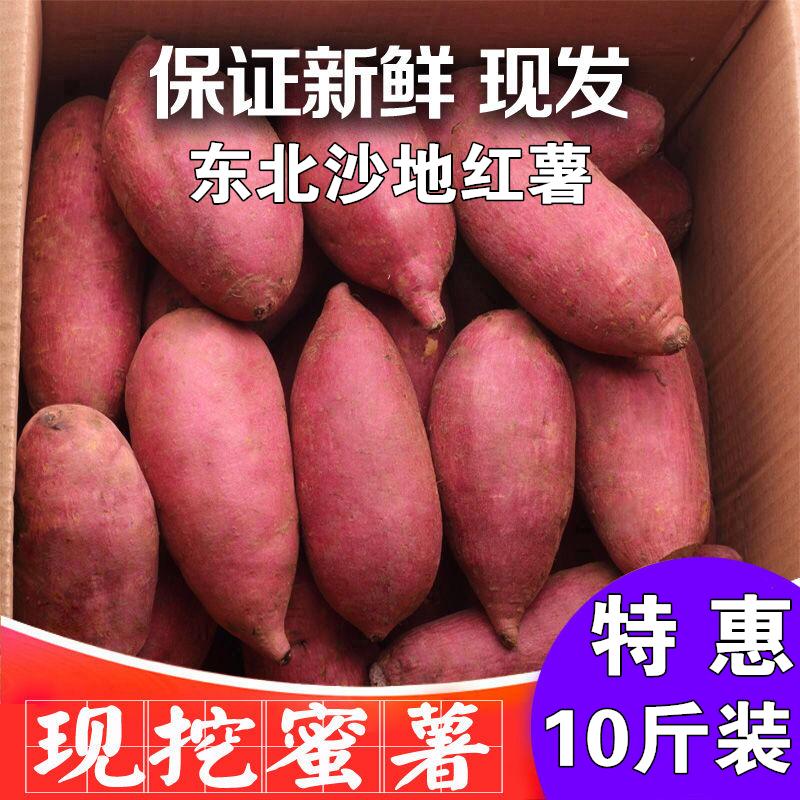 限4000张券2019年东北辽宁沙地老品种红薯板栗番薯白瓤地瓜山芋带箱10斤包邮