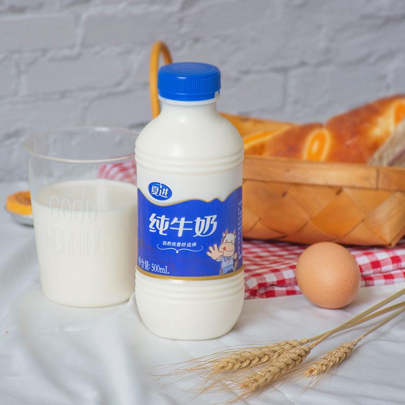 夏进早餐整箱12瓶装500ml纯牛奶