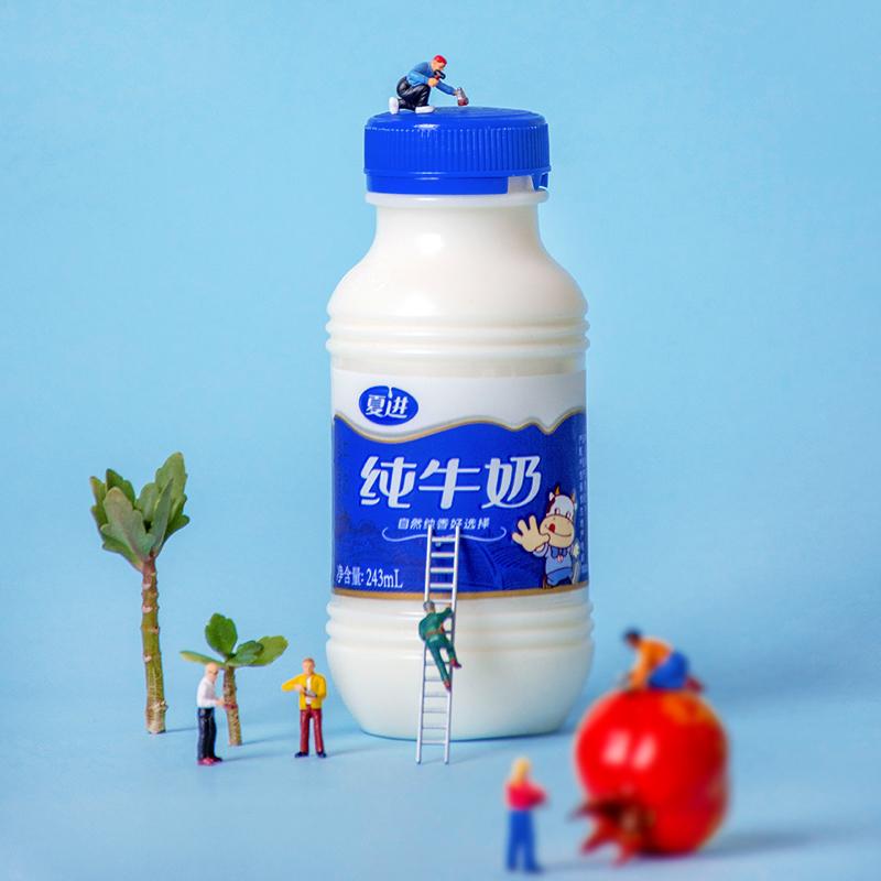 夏进纯牛奶整箱24瓶装243ml盒成长营养早餐牛奶