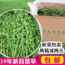 出荷2019新鮮なアルファルファ乾燥アルファルファ飼料若いウサギチンチラモルモットの乾草飼料穀物総1KG