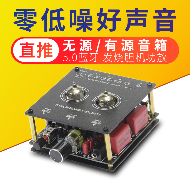 特价出口丹麦5.0蓝牙小功放发烧hifi胆机桌面房间电子管前级人声