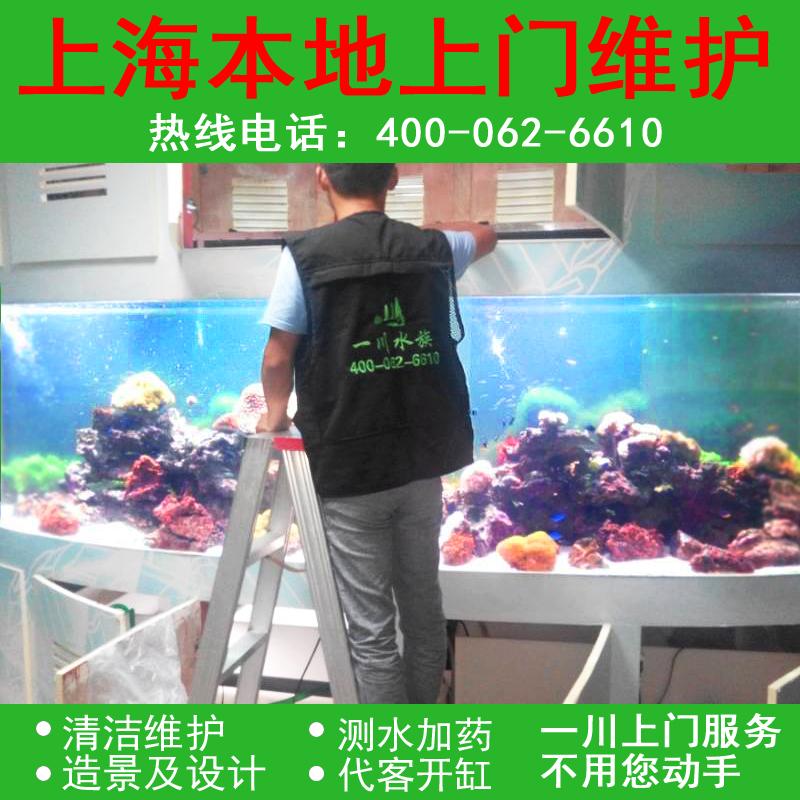 Один река вода гонка шанхай местный визит аквариум мыть поддерживать вода гонка коробка ясно причина море цилиндр ландшафтный дизайн дизайн служба