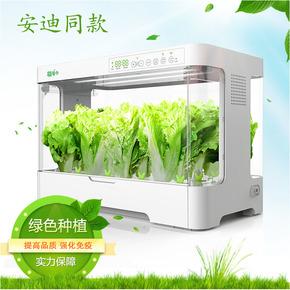 蔬菜培育箱安迪同款无土栽培箱智能家庭室内种菜水培蔬菜培育设备