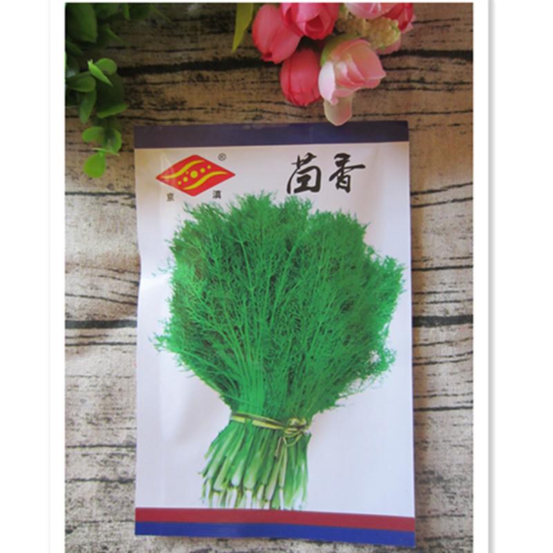 云南蔬菜种子京滇茴香15克老昆明品种阳台菜园花园播种栽家庭园艺