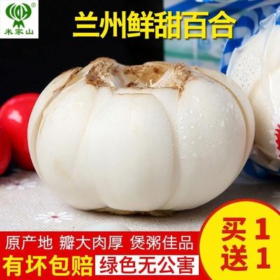 我有甘货 兰州新鲜百合大皇500g食用甜百合非百合干一斤12头
