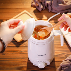 多功能陶瓷养生杯电炖锅全自动迷你办公室学生煲煮粥神器小型1人2