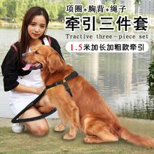 小型中型大型犬狗繩子 狗狗牽引繩 金毛泰迪胸背項圈 三件套狗鏈
