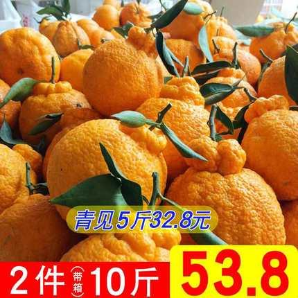 四川农家青见丑八怪当季新鲜水果橘子两件带箱10斤整箱批发包邮