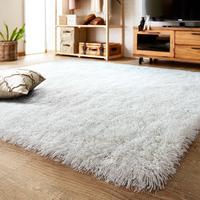 地毯客厅茶几衣帽间加厚卧室白色床边房间服装店定制阳台北欧长毛
