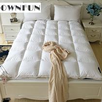 5cm10cm米床榻榻米双人橡胶床垫软订做1.5m1.8泰国天然乳胶床垫