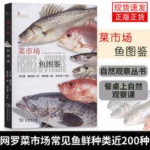 9787508699509精装人让你成为餐桌上最懂吃人类简史种食物里100林江食物简史中信正版A