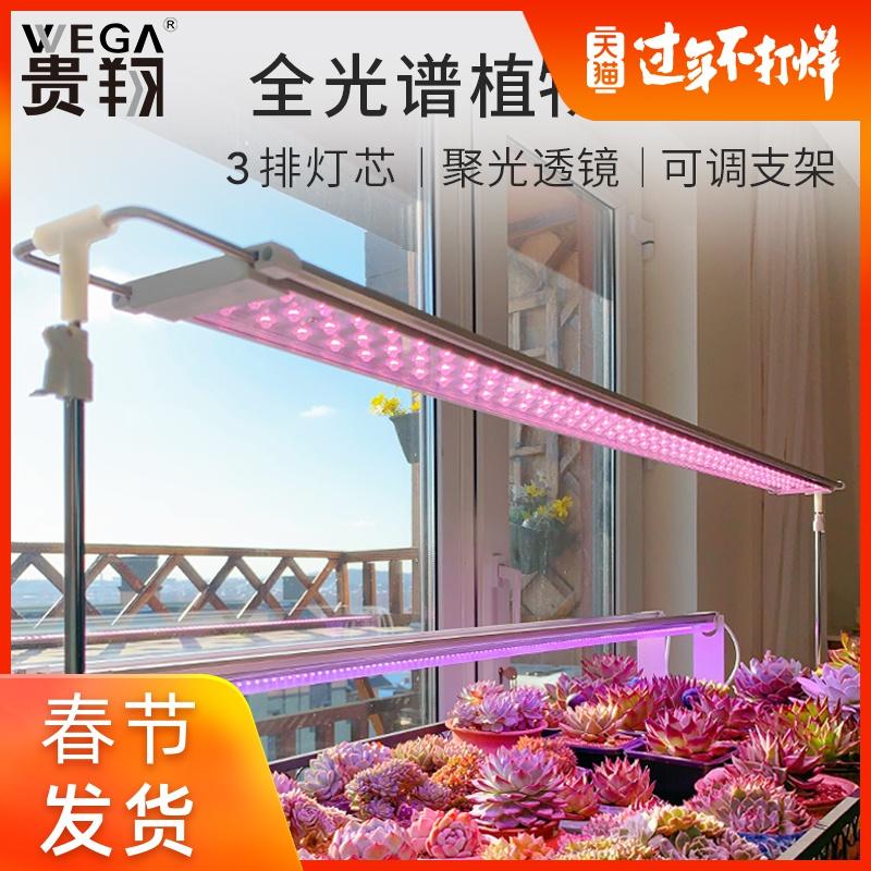 贵翔多肉补光灯Plus版 上色全光谱LED植物生长灯家用室内仿太阳光